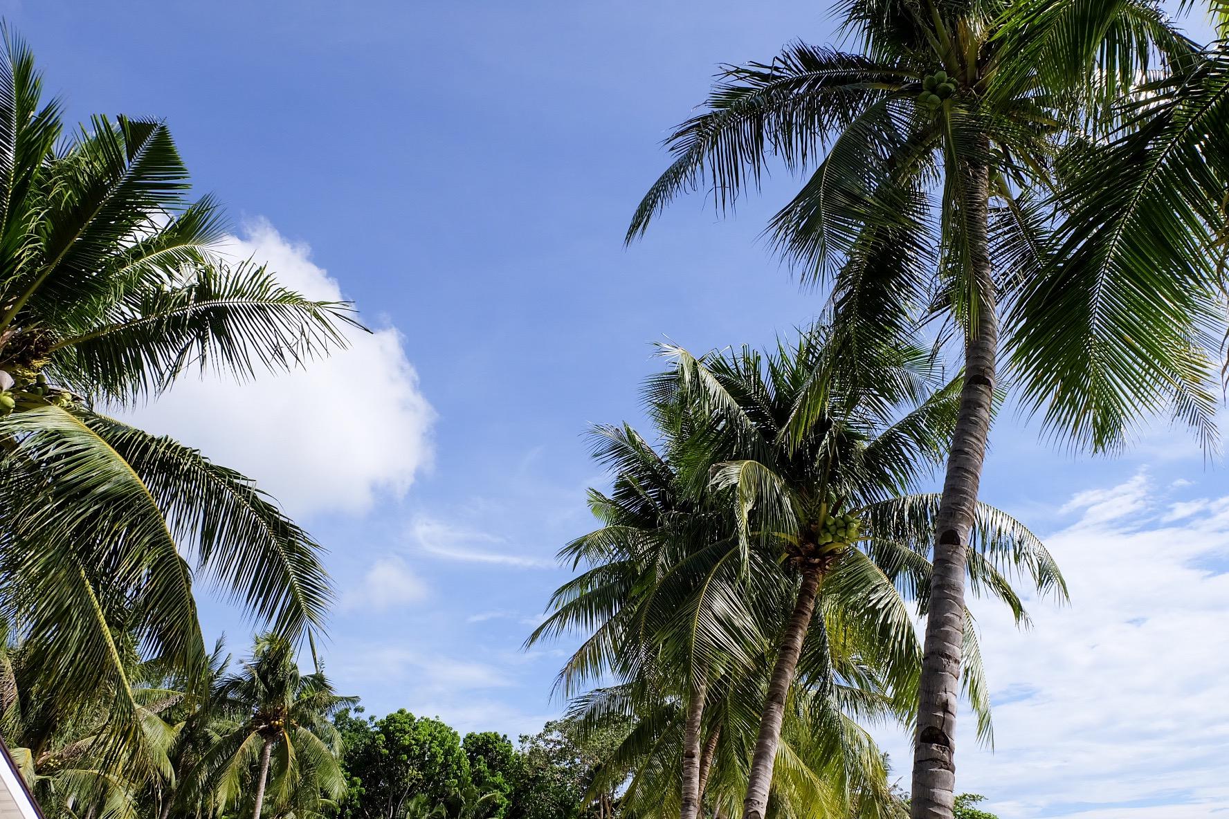 pacific-cebu-resort-iamkimcharlie-16
